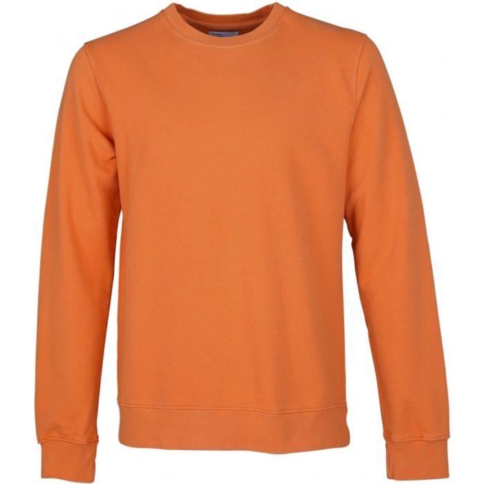 Colorful Standard – Sweat – Burned Orange